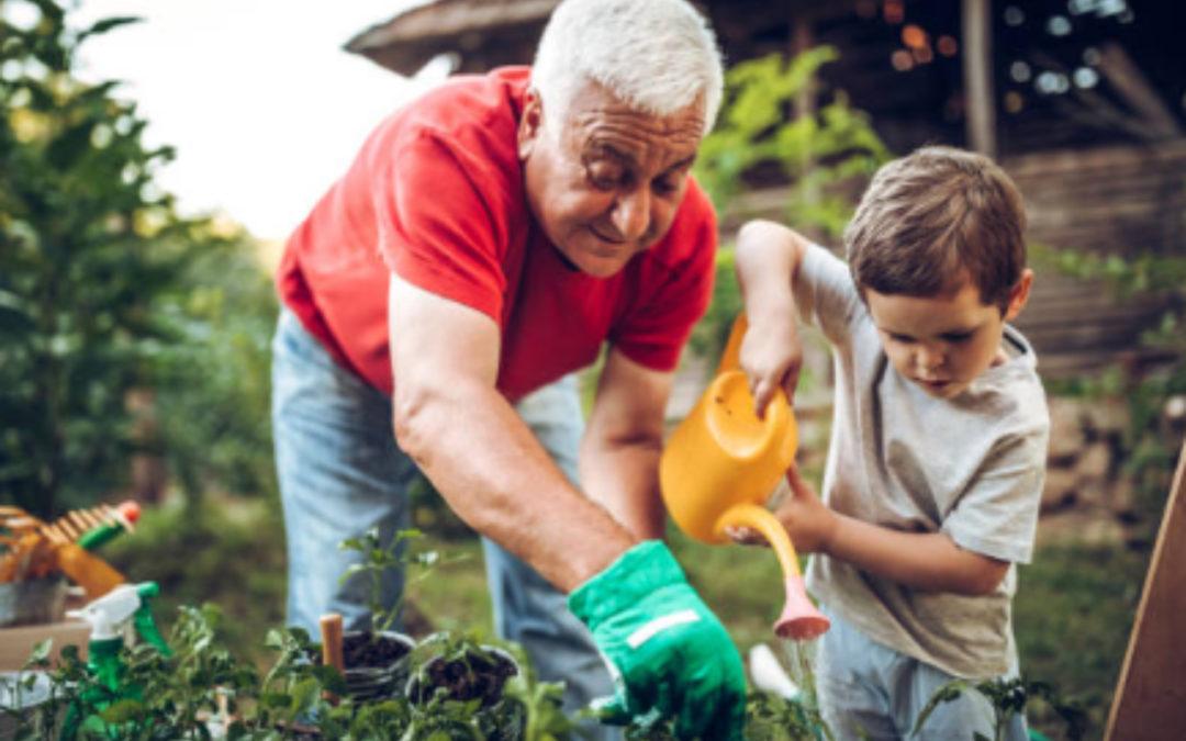 Ahorrar agua en el jardín, consejos efectivos