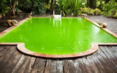 Solucionar el agua verde de la piscina de manera efectiva